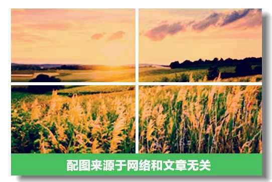 有取有舍的人多么幸福,寡情的守财奴才是不幸。——鲁达基